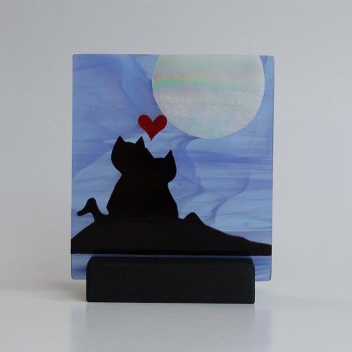 Gatti amore e luna